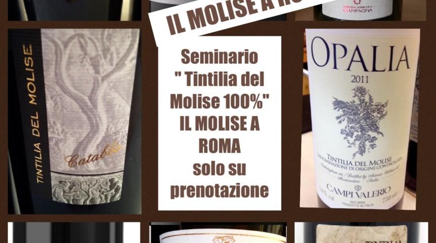 IL MOLISE A ROMA